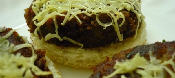 shami kabab snacker